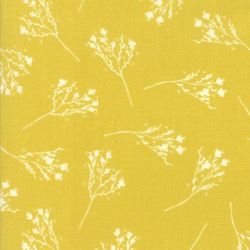 Desert Bloom 37522-18