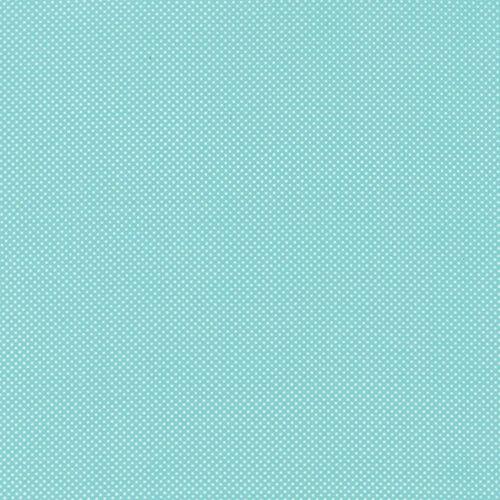 Dottie 45010-55 Aqua (30's Blender)