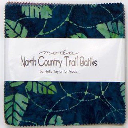 North Country Trail Batiks 4619-PP