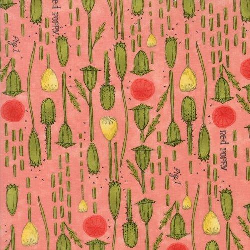 Poppy Mae 48602-14