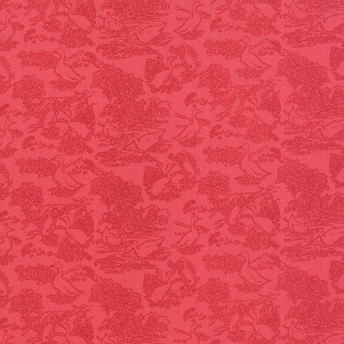 Gooseberry 5012-13