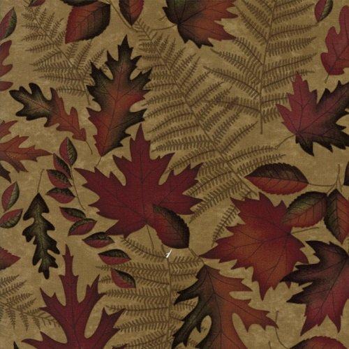 Autumn Reflections 6711-13