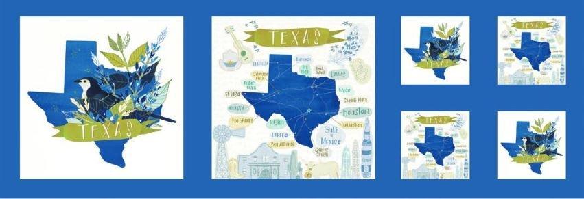 Desert Song Texas Panel Quilt Kit DSTK