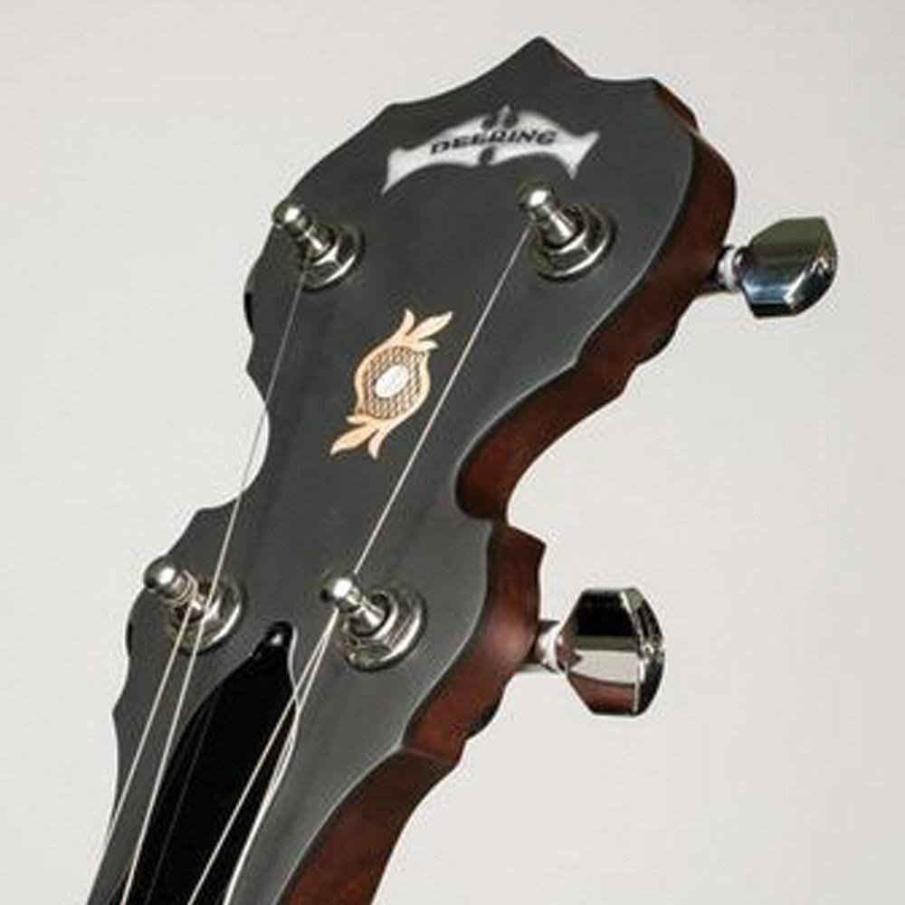 Deering Boston 5-String
