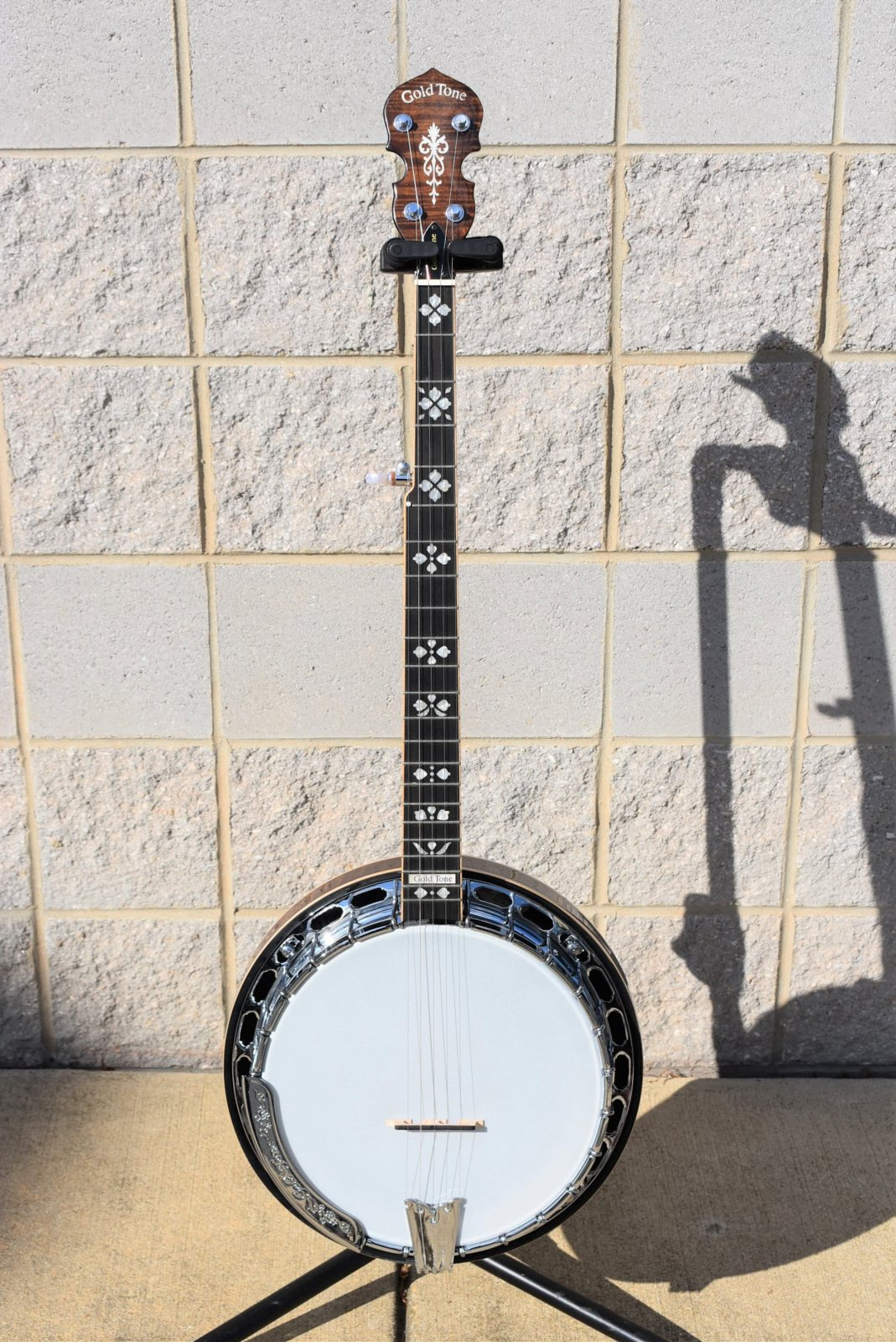 Used Gold Tone OB-250 Banjo