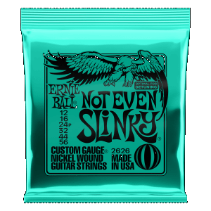 Ernie Ball Not Even Slinky