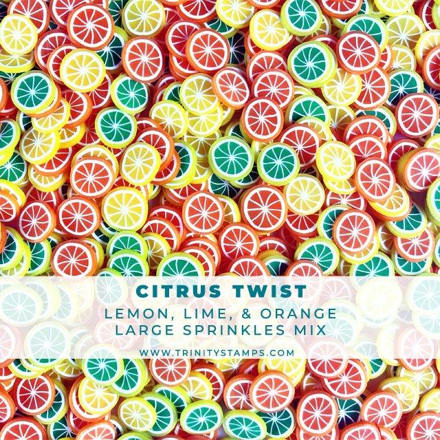 Citrus Twist - Larger size Fruit Slice Sprinkle Embellishment Mix