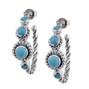 Sleeping Beauty Turquoise Hoop Earrings Set in Sterling Silver
