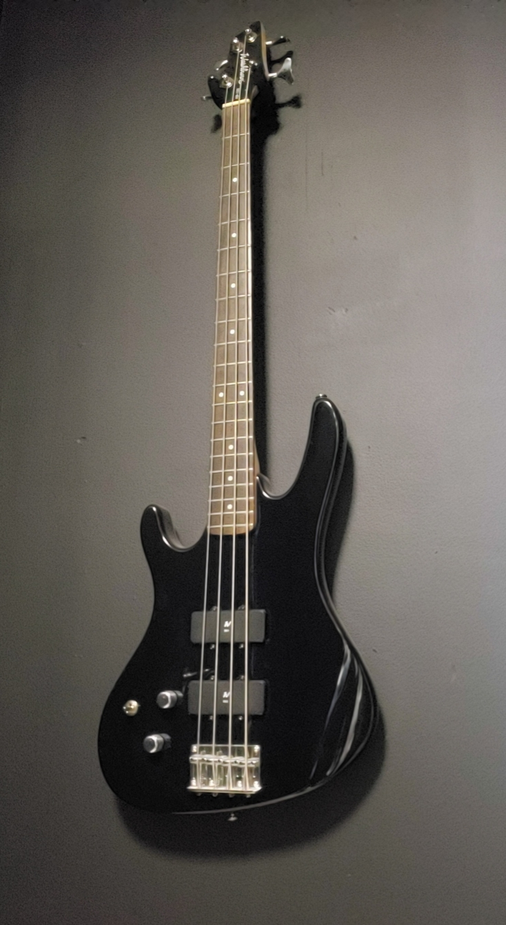Washburn XB120 LEFTY