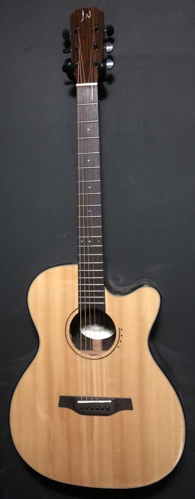 James Neligan LYN-ACFI Auditorium Size Electric Acoustic