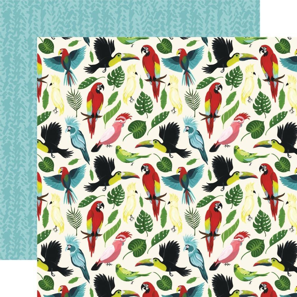 Animal Safari-Birds Of Paradise