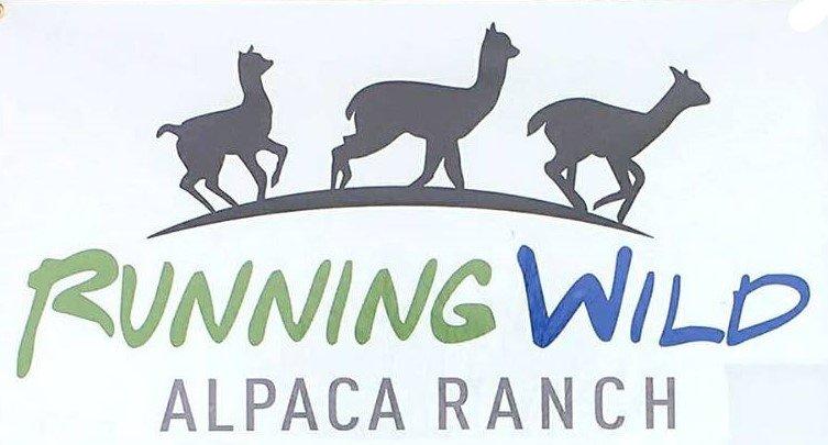 Running Wild Alpaca Ranch - Roving