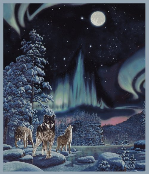 Windham Fabrics NORTHERN LIGHTS WOLF by Whistler Studios