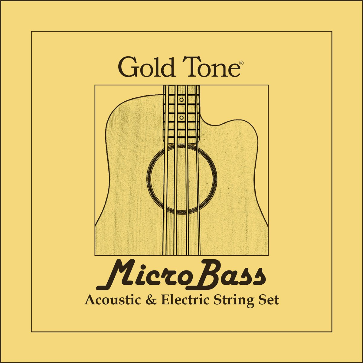 Gold Tone PGT Micro Bass String Set