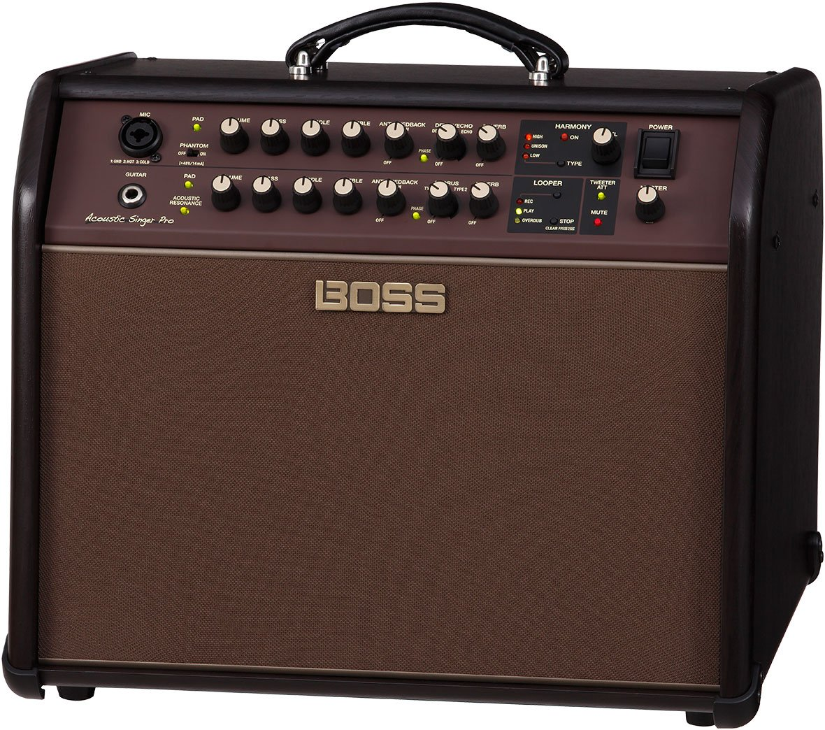 Roland ACS-PRO Acoustic Singer Pro Amp