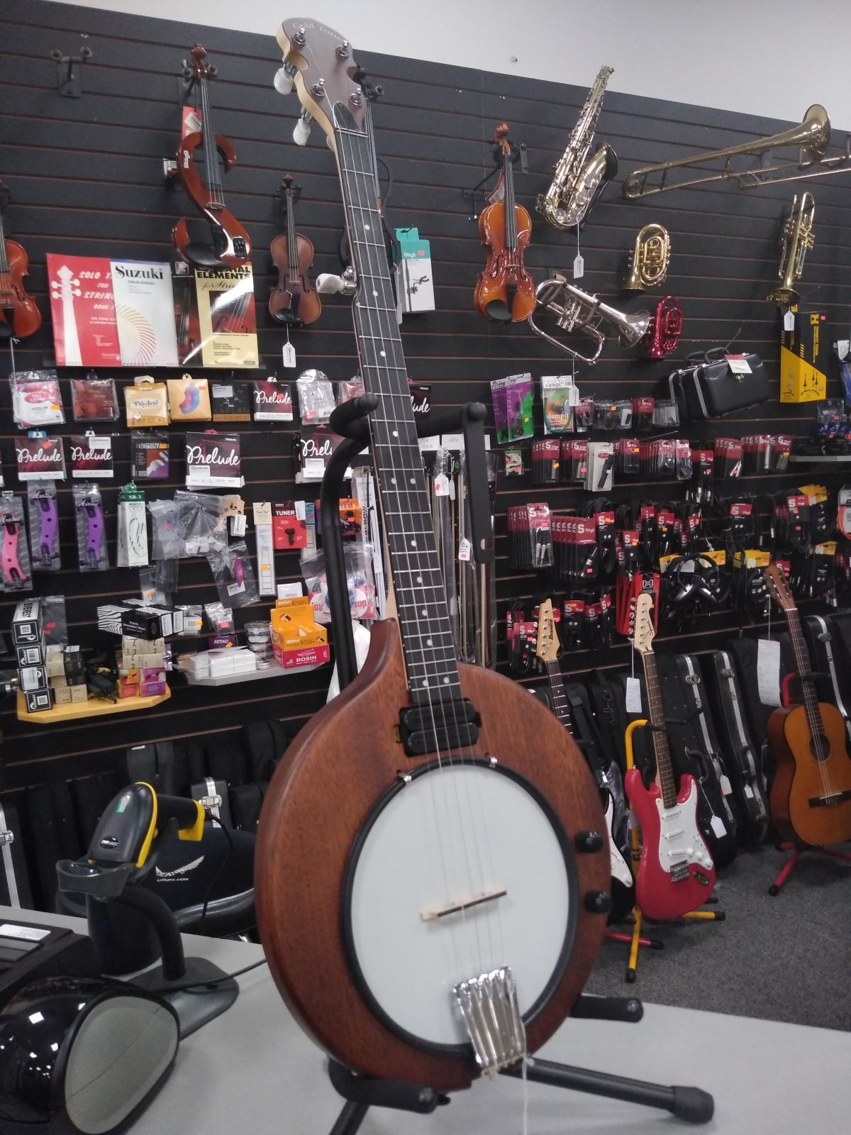 Gold Tone EB-5 Electric Banjo with Gig Bag