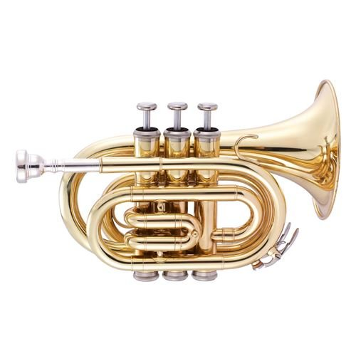 Stagg Pocket Trumpet  WS-TR247S