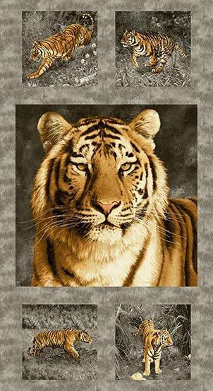 Tiger Kingdom   Panel