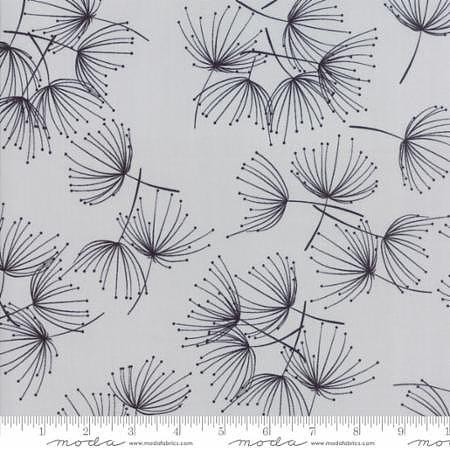 Fragile Dandelion  Zen Light Grey