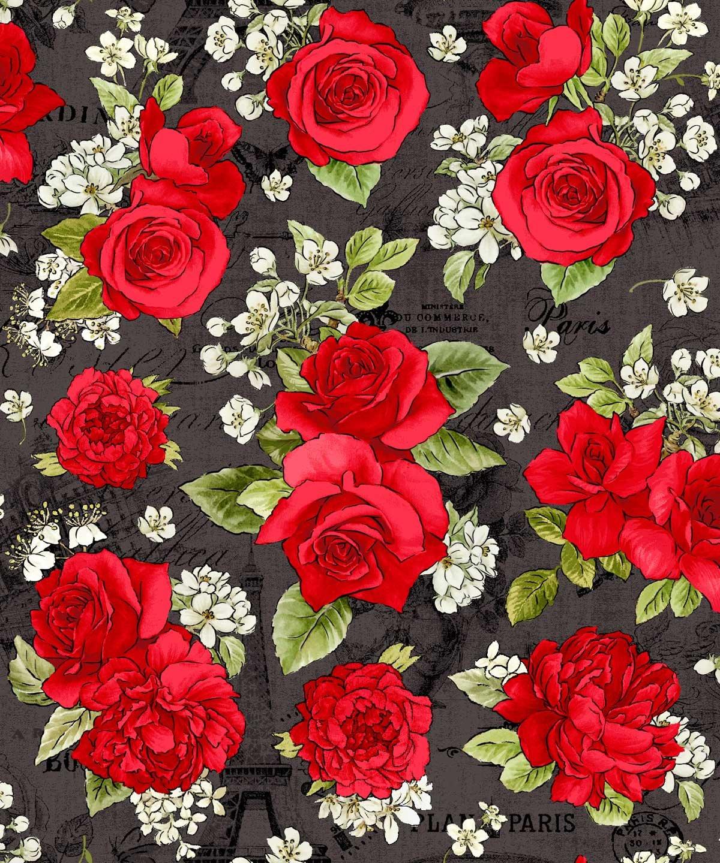 Paris - Roses on Black