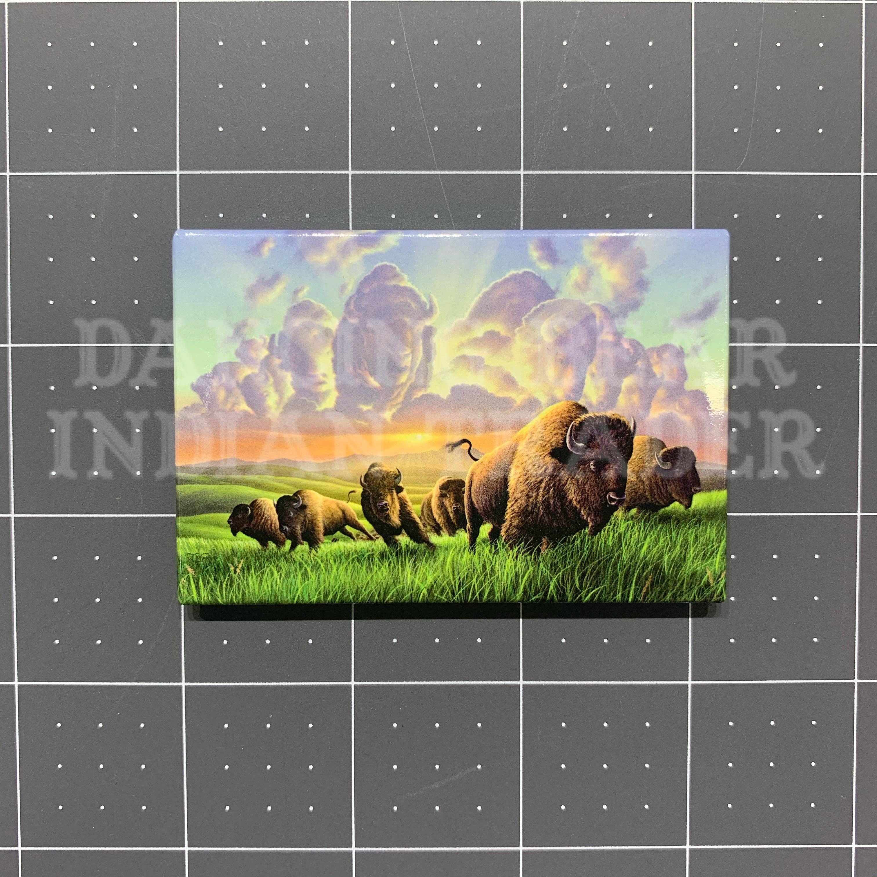 MAG67356 Buffalo Magnet