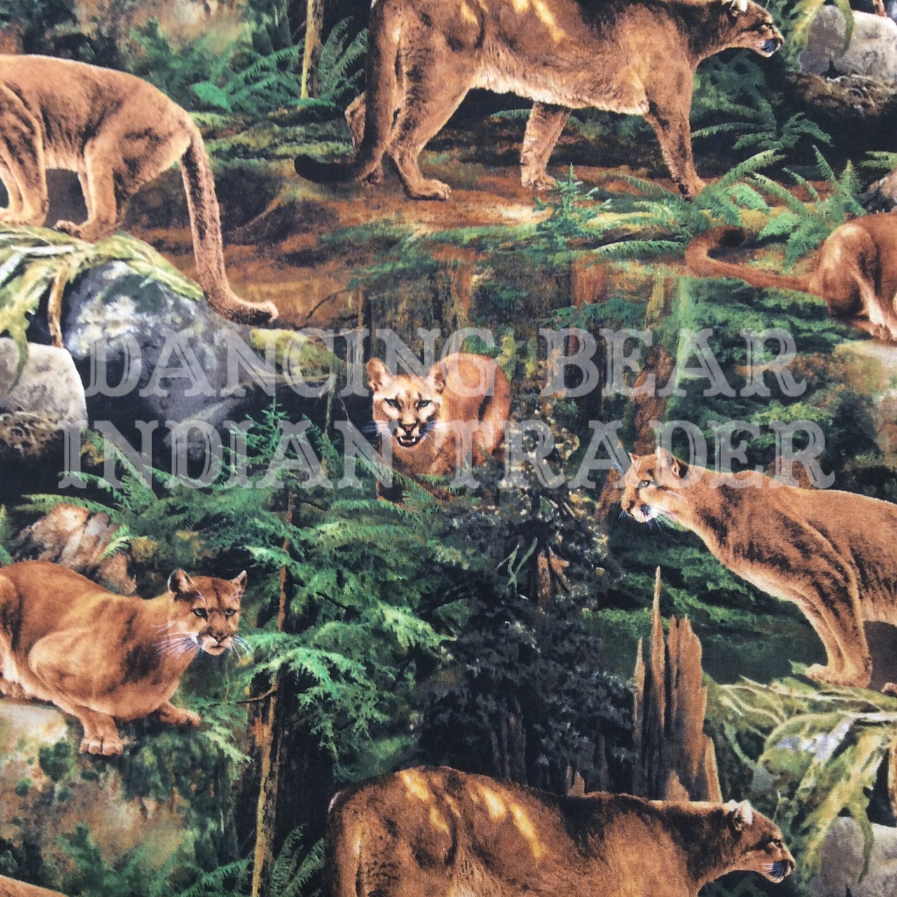 Forest Prowler Puma