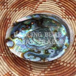 Green Abalone Shell
