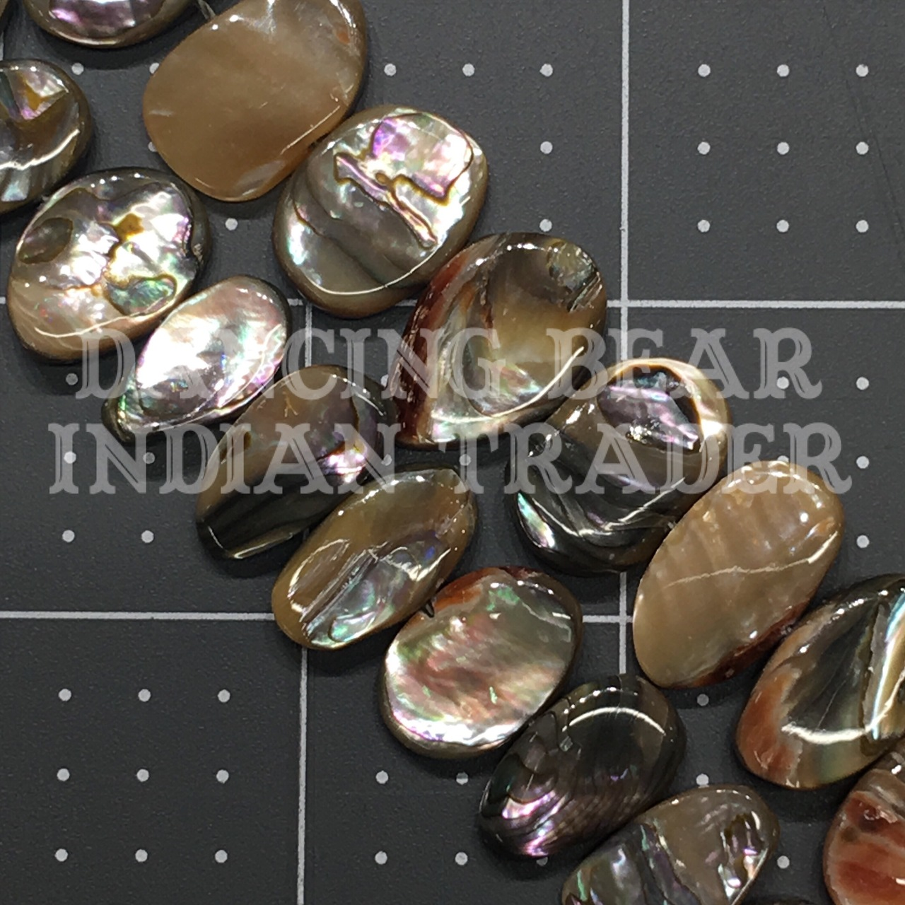 Abalone Oval 13x20mm Strand