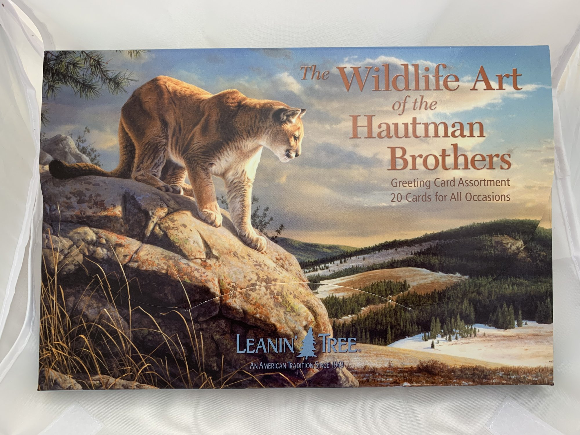 Wildlife Art of the Hautman Brothers Greeting Card Assortment