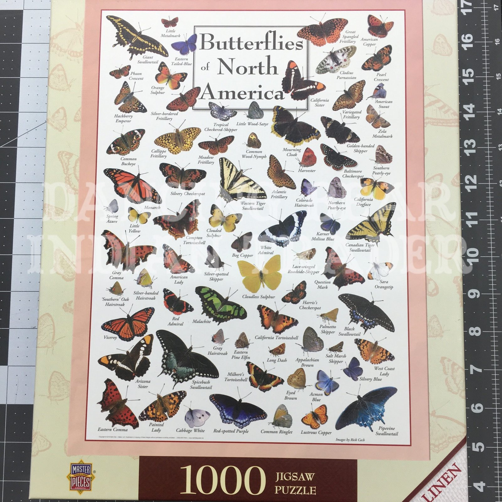 Puzzle Butterflies Of North America 1000pc