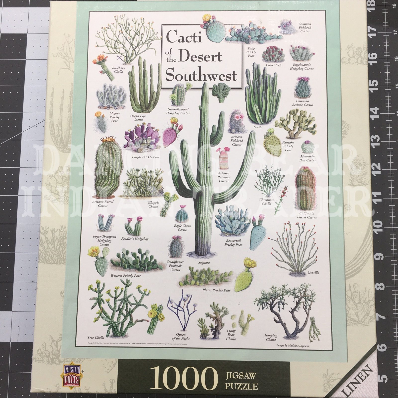 Puzzle Cacti Of The Desert Southwest 1000pc