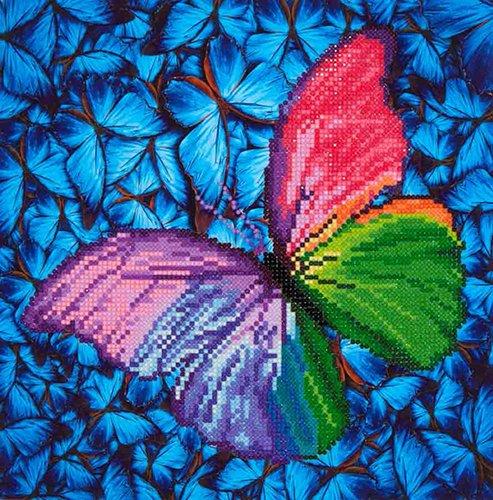 Flutter by Pink Diamond Dotz