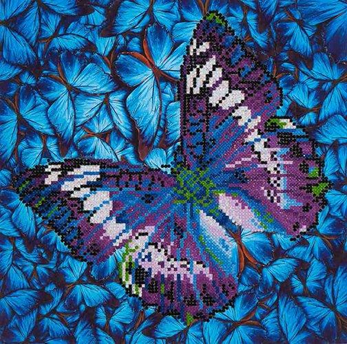 Flutter by Mauve Diamond Dotz