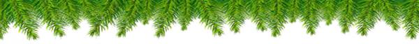 pine border top