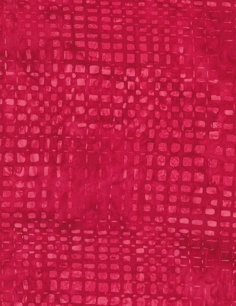 Tonga-B4548 Berry