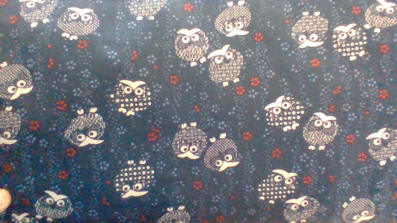 Traditional Prints Sheeting: Owls KW-3375-31A