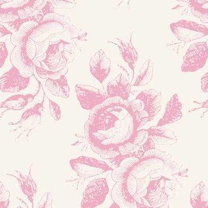 100203 Mary Pink