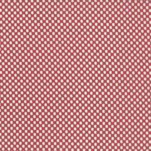 13845 11 Rouge Stars