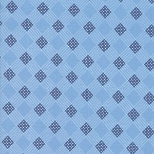 14893 14 Light Blue Plaid