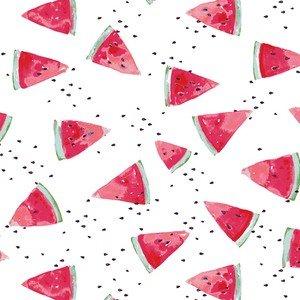 17411 Waterish Melon