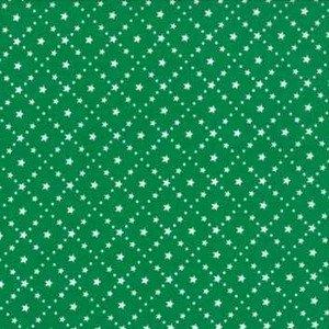 2947 25 Night Lights Evergreen