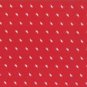 2952 11 Dandelions Red