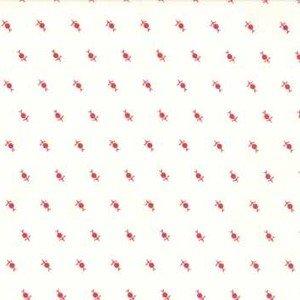 2952 13 Dandelions Cream