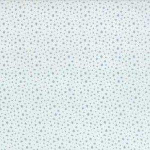 49035 13 Dew Spots