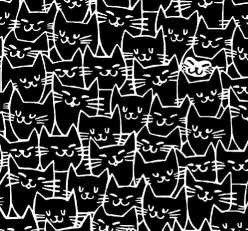 51121 2 Black Cats