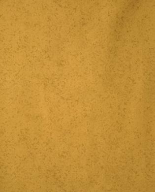 02595 - 72 Olive Dapple