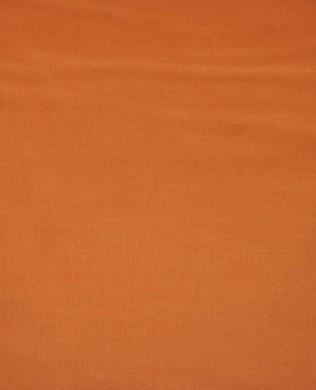 110 Light Orange