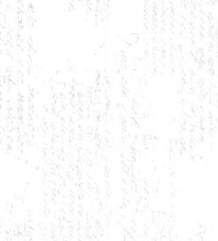 11133 12 White
