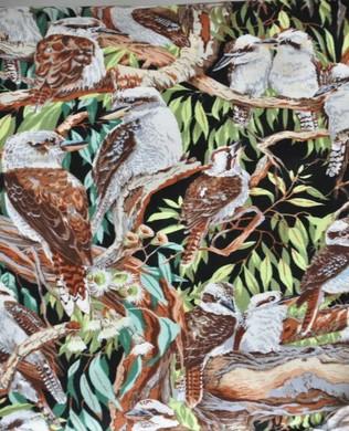11210 Kookaburra