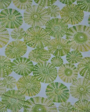 11505 1 Shells Green